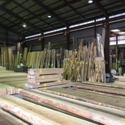 木材の初市へ!
